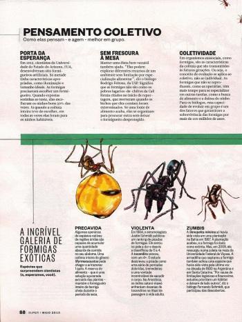 FormigasSuper-page-005