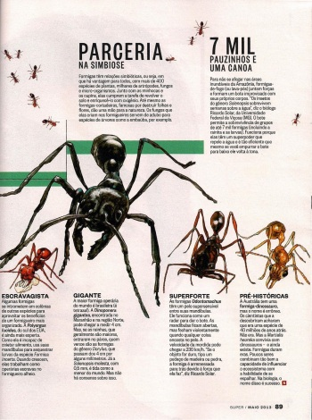 FormigasSuper-page-006